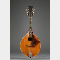 American Mandolin, Gibson Mandolin-Guitar Company, Kalamazoo, c. 1914