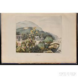 Choris, Louis (1795-1828) Vues et Paysages des Regions Equinoxiales, Recueillis dans un Voyage autour du Monde.