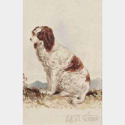 Edward Lear (British, 1812-1888)      Spaniel Seated in a Landscape