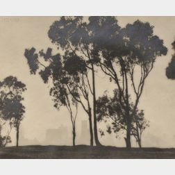 William E. Dassonville (American, 1879-1957)      Eucalyptus Trees and San Francisco Skyline