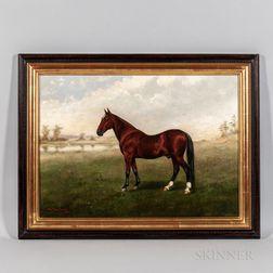 William C. Van Zandt (American, 1844-after 1860)      Portrait of a Brown Horse