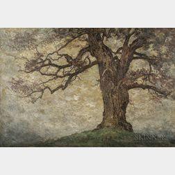 Charles William Hudson (American, 1871-1943)    Oak Tree, Misty Day