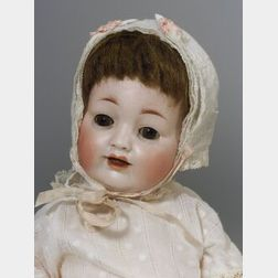 Hertel & Schwab Bisque Head Character Baby Doll
