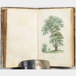 Rousseau, Jean-Jacques (1712-1778) Recueil de Plantes Coloriées.