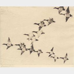Frank Weston Benson (American, 1862-1951)    Flock of Canvasbacks
