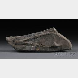 Teleosaurus Fragment