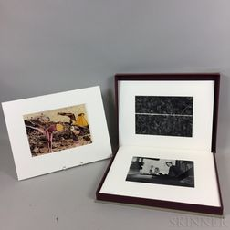Various Artists (American, 20th Century)      New Works by 10 Massachusetts Photographers  /A Portfolio