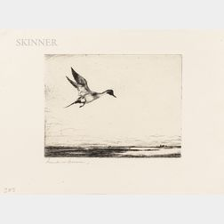 Frank Weston Benson (American, 1862-1951)      Three Images of Waterbirds: Lone Pintail