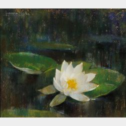 Laura Coombs Hills (American, 1859-1952)      Waterlily