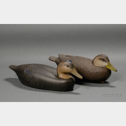Two Black Duck Decoys