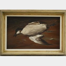 James Wingate Parr (American, 1923-1969)      Portrait of a Seabird, Possibly an Arctic Tern.