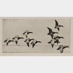 Frank Weston Benson (American, 1862-1951)      Canvasbacks