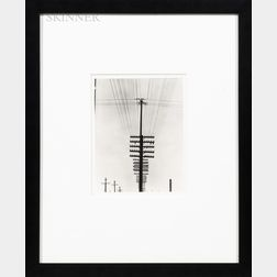 Tina Modotti (Italian, 1896-1942)      Telephone Wires, Mexico