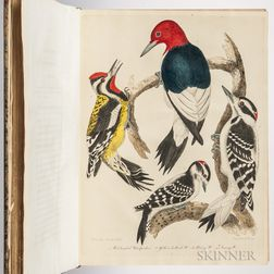 Wilson, Alexander (1766-1813) American Ornithology; or, the Natural History of the Birds of the United States: Illustrated with Plates.