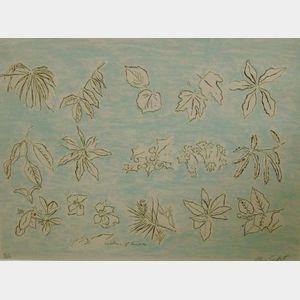 Alan Sonfist (American, b. 1946)    Gardens of Sonesta
