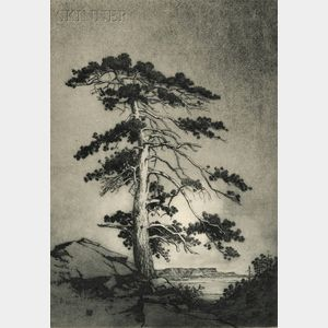 George Elbert Burr (American, 1859-1939)      The Sentinel Pine