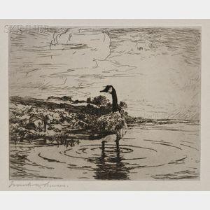 Frank Weston Benson (American, 1862-1951)      Canada Goose