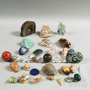 Group of Shells and Mineral Specimens