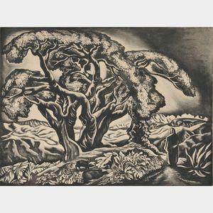 Howard Norton Cook (American, 1901-1980)      The Desert Tree