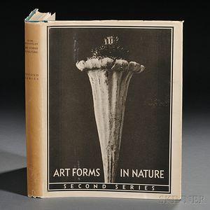 Blossfeldt, Karl (1865-1932) Art Forms in Nature, Second Series.