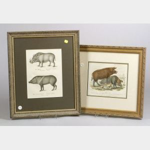 Two Framed Bookplates Depicting Wild Boars
