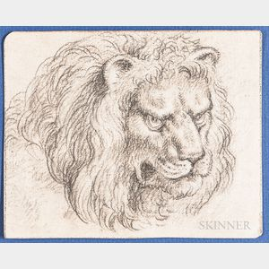 Dutch or Flemish School, 17th Century      Head of  a Male Lion
