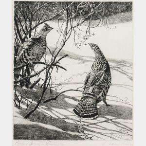 Aiden Lassell Ripley (American, 1896-1969)      Ruffed Grouse in Winter
