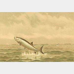 Frederick Schiller Cozzens (American, 1846-1928)  Jumping Fish