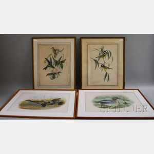 Two Pairs of Gould & Richter Lithograph Bird and Fowl Prints