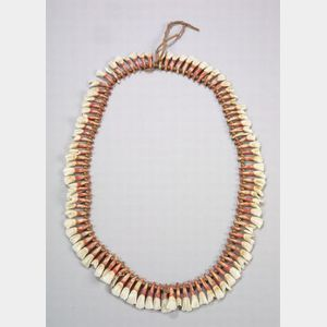 Plains Animal Tooth Necklace