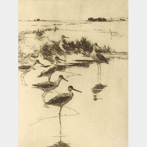 Frank Weston Benson (American, 1862-1951)  Yellowlegs No. 3