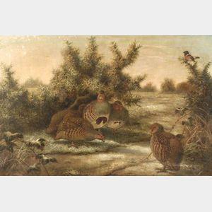 Edward Neale (British, 19th Century)  A Covey of Quail