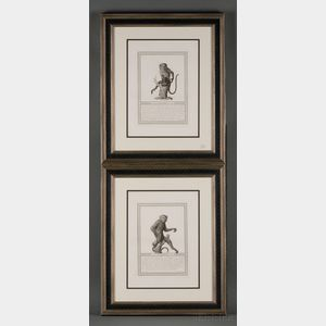 Four Framed Engravings of Monkeys