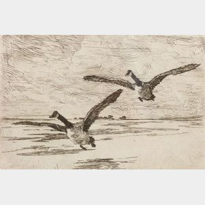 Frank Weston Benson (American, 1862-1951)    Incoming Geese