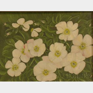 Framed Oil on Board of Blossoming Dogwood Branches