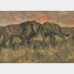Arthur Wardle (English, 1864-1949)      Lions Roaring Over Their Prey