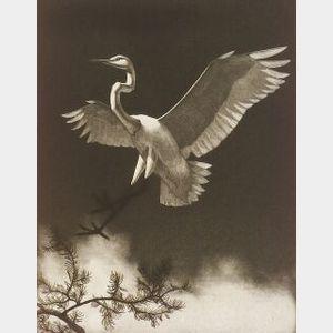 Richard Evett Bishop (American, 1887-1975)  Egret