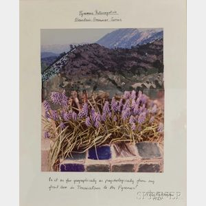 Peter Hutchinson (British, b. 1930)      Pyrenees Interrogative, Mountain Grammar Series