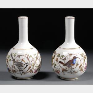 Pair of Dresden Porcelain Ornithological Bottle Vases