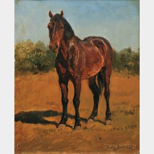Rosa Bonheur (French, 1822-1899)      Study of a Standing Horse