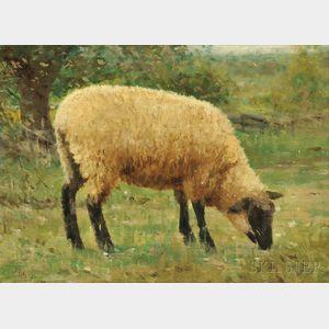 Rosa Bonheur (French, 1822-1899)      A Grazing Sheep