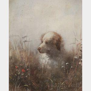 Gustav Eichhorn (German, 1875-1928)    Dog in a Field of Wild Flowers.