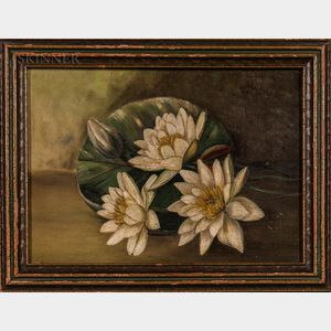 American School, 19th/20th Century    Still Life with White Water Lilies