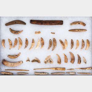 Collection of Hawaiian Shark and Dog Teeth Tools and Ornaments
