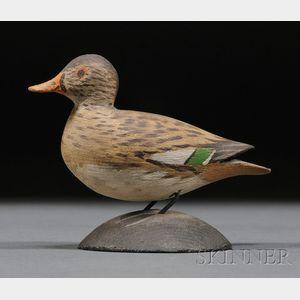 Miniature Green Wing Teal Hen