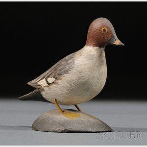 Miniature Goldeneye Hen