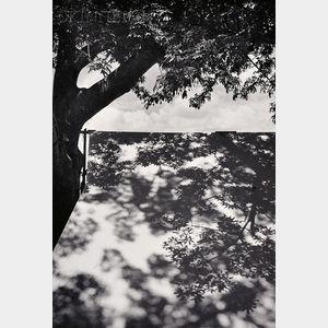 Manuel Alvarez Bravo (Mexican, 1902-2002)      Luz restirada (Lengthened Light)