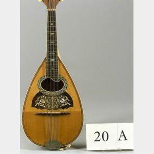 American Mandolin, The Vega Company