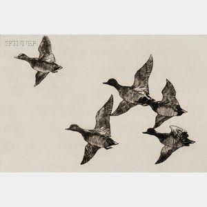 Frank Weston Benson (American, 1862-1951)      Flying Widgeon