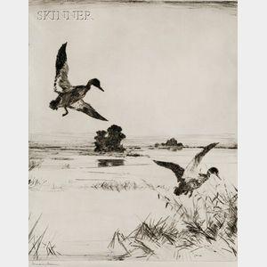 Frank Weston Benson (American, 1862-1951)      Two Black Ducks
